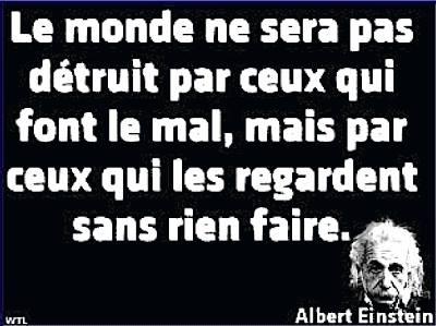 Einstein_ceuxQuiRegardent